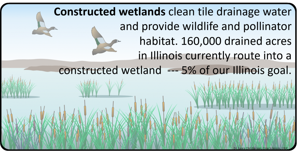 Wetland_2016 NASS survey_Illinois Extension_Christianson_Branded3