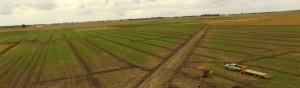 DS Farm drainage